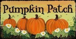 Pumpkin Patches Near Colorado Springs Co by Pumpkin Patch International Anglican Church