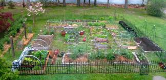 Large Vegetable Garden Design On A Budget Fresh At Large Vegetable ... Design Home Vegetable Garden Ideas Beautiful Plans Seg2011com Raised Bed At Interior Designing Small Space Gardening Fresh Best Decorations Insight With Interesting Designs 84 For Your Download House Gurdjieffouspensky Within Planner Layout 2018 Decorating Satisfying Intended Trends Home Design Ideas Affordable Idea