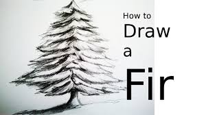 28 Collection Of Christmas Tree Drawing Realistic