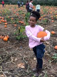 Pumpkin Picking In Chester Nj by Alstede Farms Chester Nj Top Tips Before You Go With Photos