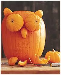 Colorfast Tile And Grout Caulk Msds by 16 Owl Pumpkin Carving Stencil Pug Pumpkin Halloween