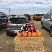 Best Pumpkin Patch Near Roseville Ca by Fantozzi Farms Corn Maze U0026 Pumpkin Patch 49 Photos U0026 18 Reviews