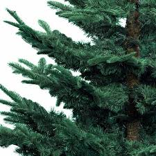 8 Ft Black Artificial Christmas Tree by Kaemingk Nobilis Fir Blue Christmas Tree 8ft Charlies Direct