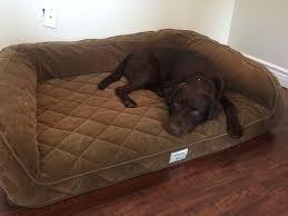 orvis dog bed korrectkritterscom