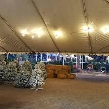 Bonita Pumpkin Patch Sweetwater Road by Pinery Christmas Trees 23 Photos U0026 15 Reviews Christmas Trees