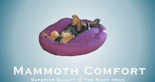 Mammoth Dog Beds by Win A Free Dog Bed