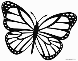 Butterfly Coloring Pages Pictures In Gallery Page