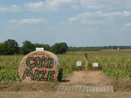 Hillcrest Farms Pumpkin Patch by 10 Awesome Corn Mazes To Do In Alabama This Fall