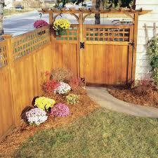 Sedum Orbit Bronze Garden Ideas Plants Garden Pink Flowers