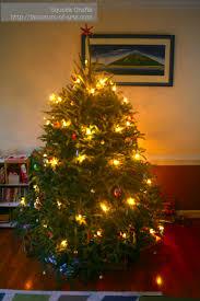 Saran Wrap Xmas Tree by December 2013 Factotum Of Arts