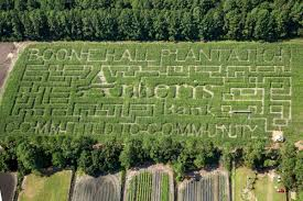 Pumpkin Patch College Station by Get Lost Ameris Bank Corn Maze Unveiled At Boone Hall Pumpkin