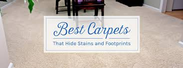 Best Type Of Flooring For Dogs by Best Carpets That Hide Stains And Footprints Empire Today Blog