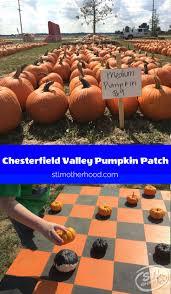 Pumpkin Pie Minecraft Id by Chesterfield Valley Pumpkin Patch Review