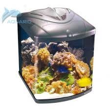 aquarium nano eau de mer www aquariotech nano aquarium récifal complet 128 litres