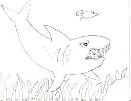 Shark Tale Coloring Pages To Print Sharks Pdf Great White Printable Color Property Animal Full