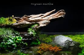 Aquascape Tutorial Video: Simplicity By James Findley - The Green ... Aquascaping Fish Tank Projects Aquadesign George Farmers Live Aquascaping Event At Crowders Ipirations Mzanita Driftwood For Inspiring Futuristic Home Planted Riddim By Alejandro Menes Aquarium Design Contest Ada Horn Wood Beautiful Natural Hardscape For Superwens 2012 Aquascape Petrified Youtube Fish Aquariums The Worlds Best Planted Aquarium Products Designs Reviews Out Of Ideas How To Draw Inspiration From Others Aquascapes 7 Wood Images On Pinterest Sculpture Lab Tutorial Nano Cube Size 20 X 25h