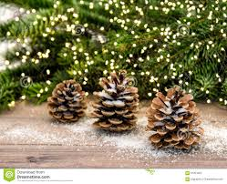 Download Pine Cone And Christmas Tree Branches Lights Decoration Stock Image