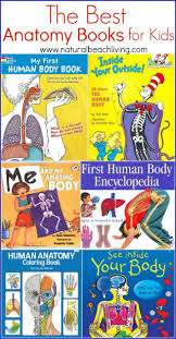 The Best Anatomy Books Learning Aids For Kids
