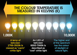 leds difference between warm white and cool white