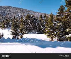 100 Kalavrita Ski Center Image Photo Free Trial Bigstock