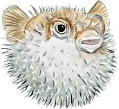 Details About Puffer Fish Saltwater Fishing Ocean Vinyl Decal - Car Home  Truck SUV Boat RV Fugu Truck Reaches Kickstarter Goal Plans For April 1 Eater Boston Album Google Diverse Ding Scene Flourishes In Malden Herald Osaka Japan June 24 Front Stock Photo Edit Now 106724930 The Passionate Foodie Food Is Coming Food Truck A Little Bit About A Lot Of Things Page 3 Group Announces 22 Line Up At Somerville Festival Trucks Edible Fuel And Hand Holding Classic Nozzle Pumping Vector Eat Sts James Cunningham On Trucks Features Hub
