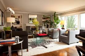 Cheetah Print Living Room Ideas Great In Decor Images