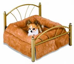 Burrowing Dog Bed by Excellent Small Dog Bed 39 Small Dog Beds For Sale Ireland Small