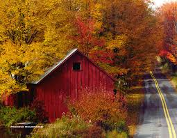 The Poconos I Would Like To Be Driving Down That Road....see Where ... Xlentcrap Barns Flowers Stuff 2009 In Vermont The Fall Stock Photo Royalty Free Image A New England Barn Fall Foliage Sigh Farms And Fecyrmbarnactorewmailpouchfallfoliagetrees Is A Perfect Time For Drive To See National Barn Five Converted Rent This Itll Make You See Red Or Not Warming Could Dull Tree Dairy Cows Grazing Pasture With Dairy Barns Michigan Churches Mills Covered Mike Of Nipmoose Engagement Beauty Pa Leela Fish Rustic Winter Scene Themes Summer Houses Decorations