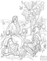 Barren Fig Tree Parable Christianity Bible Coloring Pages