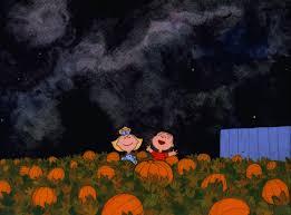Pumpkin Patch Ct 2015 by Little And Boy Picking Pumpkins On Halloween Pumpkin Patch