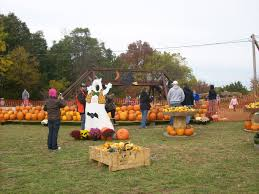 Columbus Ohio Pumpkin Patches by Photo Gallery Sissons U0027 Pumpkin Patch