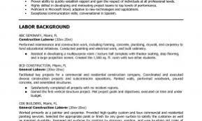Resume Title Examples For General Labor Lovely Template Weoinnovate