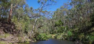 100 Lerderderg State Park Victorian National S