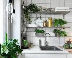 küche mit kräutergarten dekorieren tipps und diy ideen