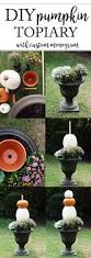Carvable Craft Pumpkins Wholesale by Best 25 Pumpkin Topiary Ideas On Pinterest Fall Topiaries Fake