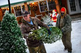 Shells Christmas Tree Farm by No White Christmas But A Few Inches Of Snow Possible Saturday