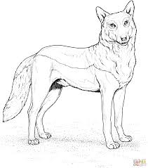 Click The Red Wolf Coloring Pages To View Printable