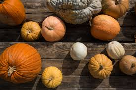 Athens Ohio Halloween 2017 by 2017 Athens Area Pumpkin Patches Athens County Visitor U0027s Bureau