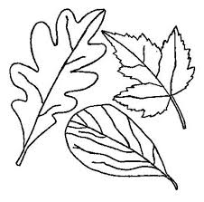 Drawing Of Fall Leaf Coloring Page