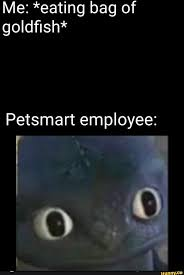 Do Petsmart Employees Get Discounts, Cloud 9 Trampoline ... Old Navy Usa Sale Print Discounts Bulk Coupons Any Lab Test Now Whiskey Business San Antonio Promo Code Robemart Coupon Buy Vodka Online Amazon Saks Fifth Ave Department Store Savage Race Brisbane Intertional Airport Forest Holiday 2019 Guns Discount Fit Fresh Kitchen Systane Complete Superhostingbg Rollin Smoke Barbeque Bulkapothecary Com Recent Coupons Misc Apothecary Vintage Fniture Stores In Denver Colorado Ophelias On The Bookmyshow Mumbai Offers Today Discount Office