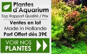 akouashop boutique aquariophilie aquarium matériel et