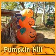 Pumpkin Patch Clarksville Tn 2015 by 2017 Best Pumpkin Patches Near Nashville Nashvillelife Com