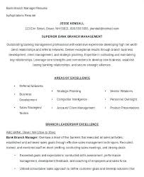 Resume For A Bank Sample Manager Superior Branch Management Summary Examples Banking