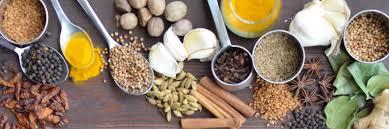 basics of cuisine basics of indian cuisine usf sarasota manatee