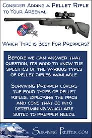 Pellet Rifles Can Be A Useful Asset In Your Prepper Arsenal
