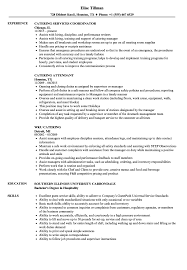 Catering Resume Samples | Velvet Jobs Resume Sales Manager Resume Objective Bill Of Exchange Template And 9 Character References Restaurant Guide Catering Assistant 12 Samples Pdf Attractive But Simple Tricks Cater Templates Visualcv Impressive Examples Best Your Catering Manager Must Be Impressive To Make Ideas Sample Writing 20 Tips For