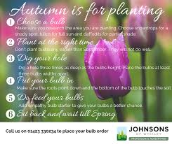 autumn is for planting johnsons of whixley