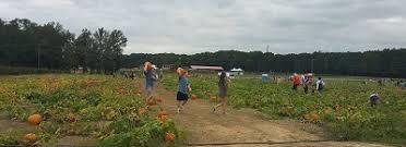 Closest Pumpkin Patch To Marietta Ga by Atlanta Area Of Georgia Pumpkin Patches Corn Mazes Hayrides And