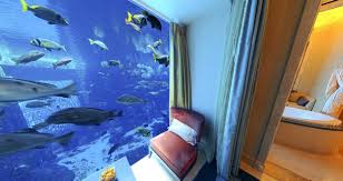 104 The Water Discus Underwater Hotel 9 Rooms You Ll Want To Dive Right Into