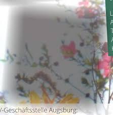Kã Che Lutz Augsburg Mitgliederinformation 2020